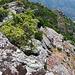 Blick vom Monte Grossu