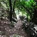 wunderschöner Hohlweg mit Trockenmauern am Macinaghju Bach