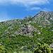 Monte Grossu