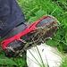 Sehr, sehr hilfreich auch auf steilen, nassen Grashängen!<br /><br />Molto utili anche sui pendii ripidi erbosi e bagnati!