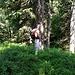 ein Männlein steht im Walde  ....   ;-)