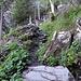 Der Aufstieg durch die Waldschneise