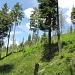 Peisaj pe traseul Cascada Cailor - cariera - Borsa Complex