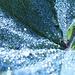 schöne Oberflächen-Spannungs-Effekte des Wassers