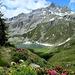 Lago di Pianboglio m. 1996