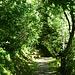 Ein zunächtst breiter Weg führt durch die Nordflanke der Aiguille, ...