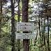 reached Franconia Ridge