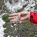 <b>Sabbia della dolomia saccaroide.</b>