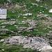 Gemsen bei der Alpe Scaredi
