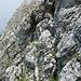 Unter der II. Stufe im Paray S-Grat: hier musste ich dieses Mal passen, der Fels war z.T. noch feucht, und meine Kletterkünste sind nach 10 Jahren leider auch nicht besser geworden...
