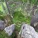 Abstieg auf der Normalroute vom Gipfel in die kleine Scharte. Hier der obere Teil und...