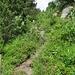 Das ist der Ausstieg oder der Einstieg auf die eigentliche Gratroute.