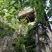 Die Glecksteinhütte, die vor dem Ersten Weltkrieg vom Alpenclub Amicitia erbaut worden ist, thront hoch oben auf einer mächtigen Sandsteinbank (nicht betreten, Zugang einsturzgefährdet)