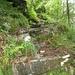 """typischer Tessiner Aufstieg - vielerorts noch mit Wasser """"überflutet"""""""