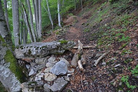 Kurz nach diesem flachen Stein links am Weg geht der Laubenweg rechts ab.