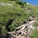 Gipfelaufsteig (Steil)