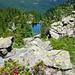 Lago di Sfii, 1909m - Blick vom Aufstieg gegen den Passo Pianaccio