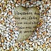 "<b>La perla di saggezza odierna...<br />""Verstehen kann man das Leben nur rückwärts.<br /> Leben muß man es vorwärts.""<br />""La vita si può capire solo all'indietro, ma si vive in avanti.""<br /><br />Søren Aabye Kierkegaard<br />(1813 - 1855), filosofo danese, teologo e scrittore. </b>"