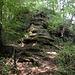 Zur Diretissima zwischen Triemli und Gratweg (Treppenweg) gehört die Überwindung von zwei Sandsteinstufen (hier die untere) - nicht schwierig, aber für Üetlibergverhältnisse eine kleine Herausforderung: interessant beispielsweise für Kinder im Primarschulalter, die gerne kraxeln und etwas erleben (nicht bei Nässe)
