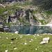 Lago Barone