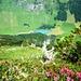 toller Tiefblick zum Stausee Waldnachter Bergen