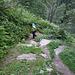 Steiler Austieg durch Lärchenwald Richtung Schrätteren