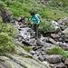 Viele Bäche zu überqueren, manchmal weniger, oft mehr Wasser.