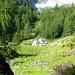 Alpe di Sfii - wie lieblich im Sommer