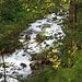 rauschender Bach unterhalb des Wegs zur Lindauer Hütte