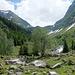 Tag 8: Aufstieg vom Rheintal durchs Val Sumvitg zur Terrihütte auf der Greina Hochebene.