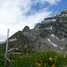 Ein winziges Gipfelkreuz, dahinter Gir mit Vorgipfel und Säntis