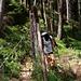 Wildschutzzaun - wer soll hier vor wem geschützt werden...