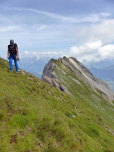 Rossfallenspitz-Napoleon: Unterhalb P. 2640, nun folgt weiter einfacher Abstieg in die Luggen.
