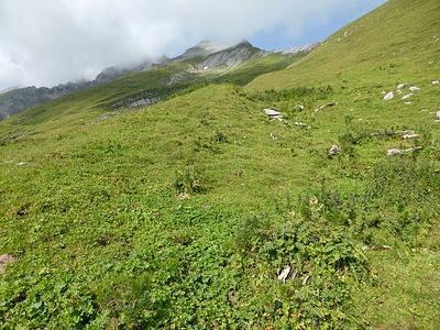 In Bildmitte der Nordostgrat auf den Rossfallenspitz und der Gipfel lugt gerade unter den Wolken hervor..