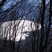 Der Luganersee erglänzt durch den Wald