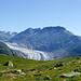 Erster Blick auf den Grossen Aletschgletscher