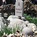 Der höchste Punkt des Tai Shan