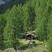 Alphütte unten im Wald