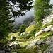 Alpe di Pivicóu