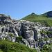 Blick über das Innerbärgli-Karrenfeld zum Aff (hat nichts mit Berg-Fauna zu tun)
