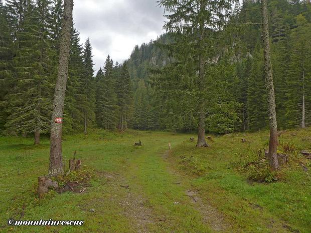 Leicht fallend führt der Steig Richtung Klammboden/Tragöß