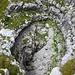 Inghiottitoio carsico nei pressi della cresta, lato Val d'Ambiez