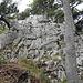 Der erste, anspruchsvollere Aufschwung mit Kletterstellen im Bereich von II-