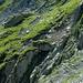 Die erste Schlüssel- und Kletterstelle, die überwunden werden muss... diese scharfkantigen, vertikalen Felsen mögen mich nicht... es gilt, einen geeigneten Weg zu finden