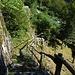 La mulattiera all'Alpe Caggiani