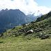 Alpe Fora, nach der langen unangenehmen Querung von der Alpe Oro