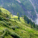 Alpe di Cavallo