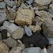 erstaunlich, was hier so alles herumliegt an unterschiedlichen Steinen
