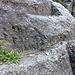 """Hier beginnen die eingehauenen Stufen: ist an der Wand der unteren Stufe die berühmte Inschrift """"ALF 1821"""" eingraviert (Hinweis auf einen Lafranca, Erbauer des Felspfads)? Mit etwas typografischer Fantasie..."""