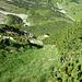 Rückblick: Durch diese steile Grasschneise bin ich Richtung Scheuakopf Vorgipfel aufgestiegen.
